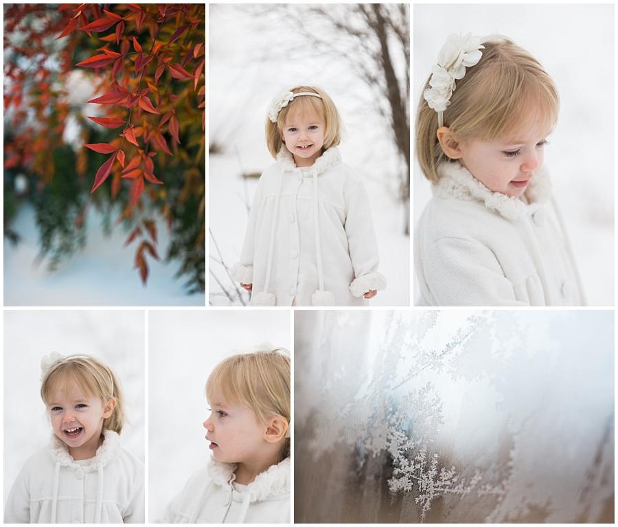 Snow2016_009
