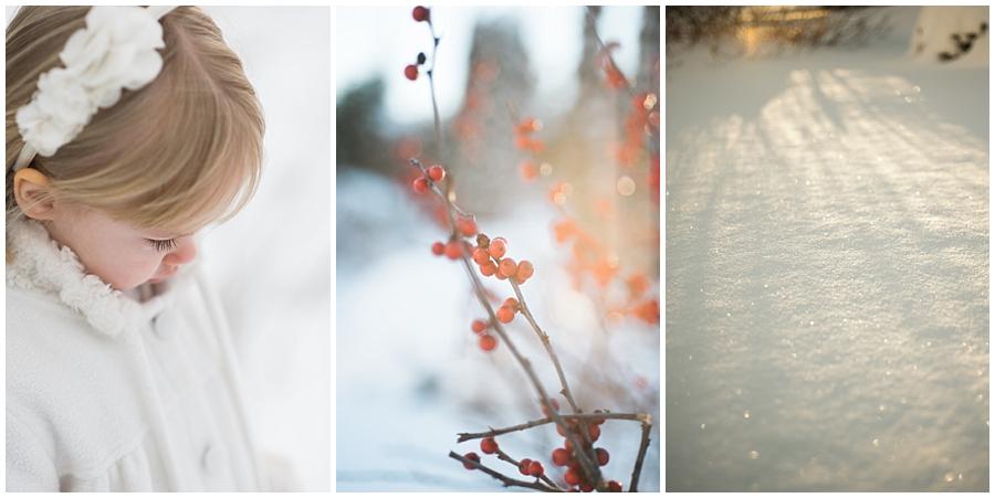 Snow2016_019